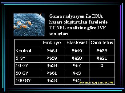 DNA10
