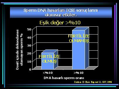 DNA_hasar11