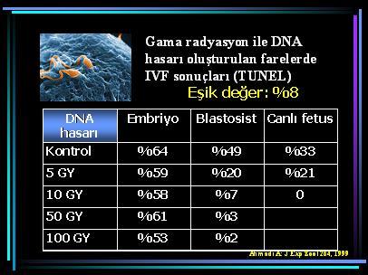 DNA_hasar12