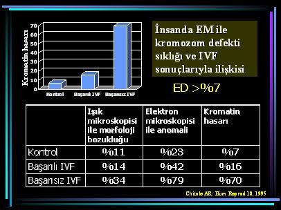 DNA_hasar13