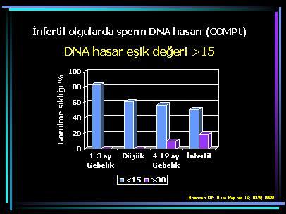 DNA_hasar14