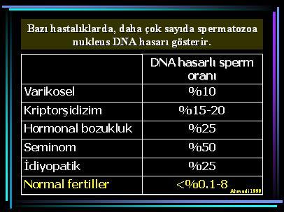 DNA_hasar15