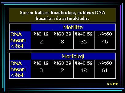 DNA_hasar20