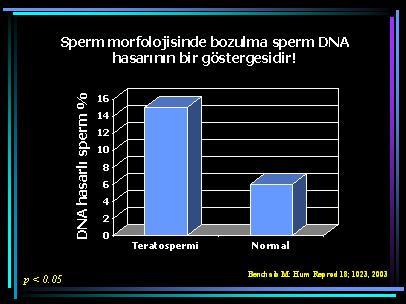 DNA_hasar21