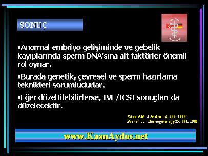 DNA_hasar40